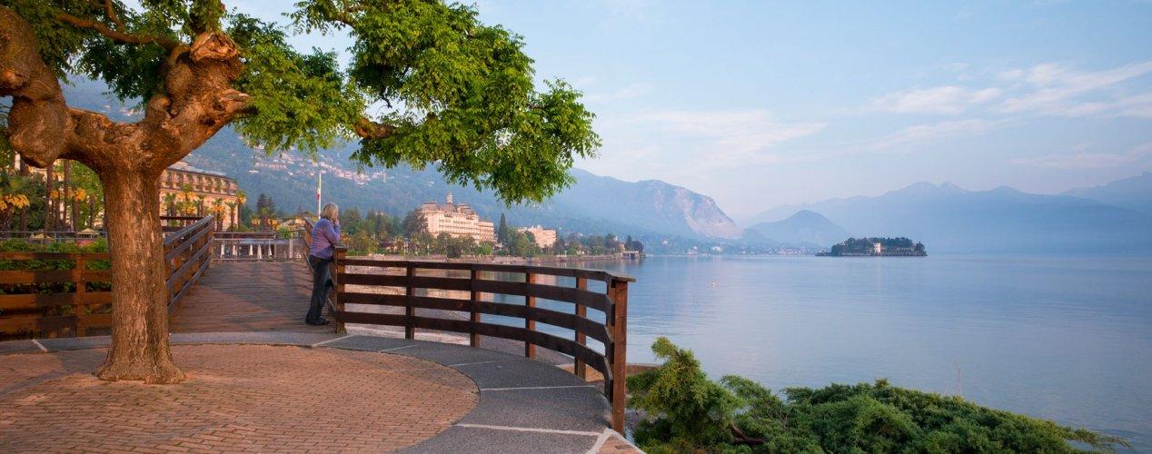 info-emozioni-01-lago-maggiore-isola-bella-albero-passeggiata-1268x500
